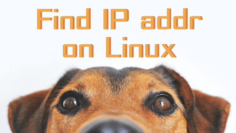 Find your ip address on Linux